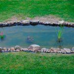 Tienes-espacio-Construyamos-un-estanque-en-el-jardín-1920