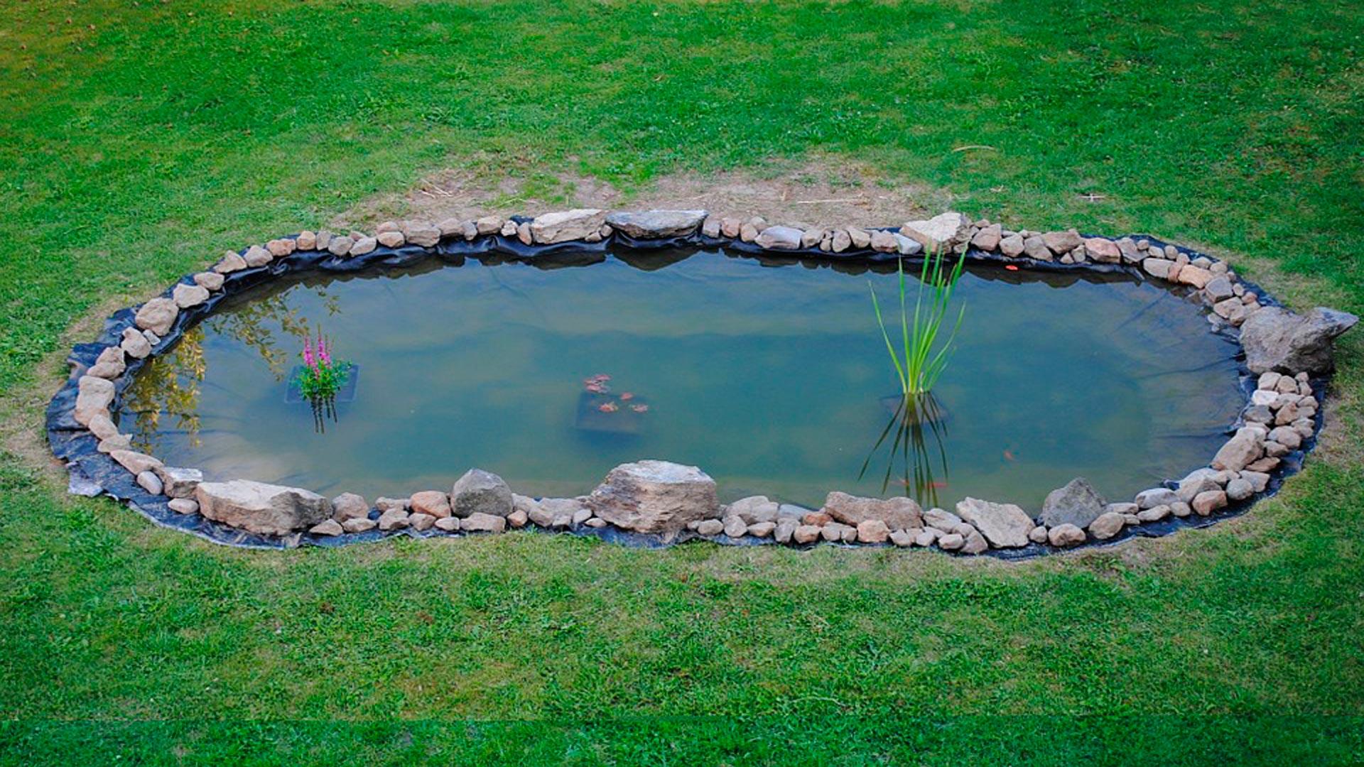 un estanque en el jardn