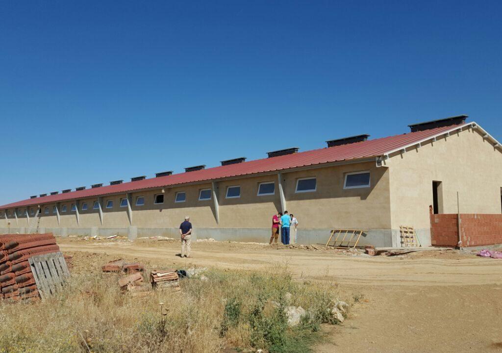 Nave cebo de porcino en Villabragima (Valladolid)