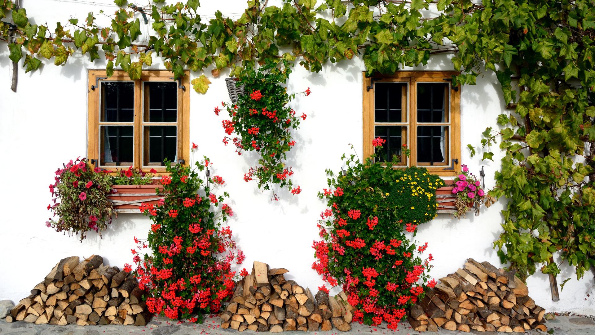 Renovar la fachada de nuestra casa for Renovar fachada de casa