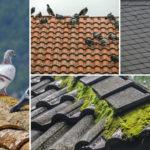 El tejado es un elemento esencial en la proteccion frente al frio y la lluvia de un edificio1920